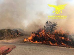 Nella giornata odierna tre incendi hanno richiesto l'intervento del mezzo aereo del Corpo forestale.