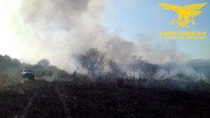 Nella giornata odierna 8 incendi hanno richiesto l'intervento dei mezzi aerei del Corpo forestale.