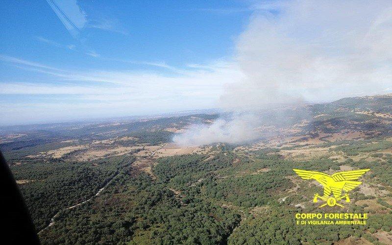 Due Canadair hanno raggiunto Villanova Monteleone a supporto degli elicotteri del Corpo forestale già all'opera per lo spegnimento di un vasto incendio.