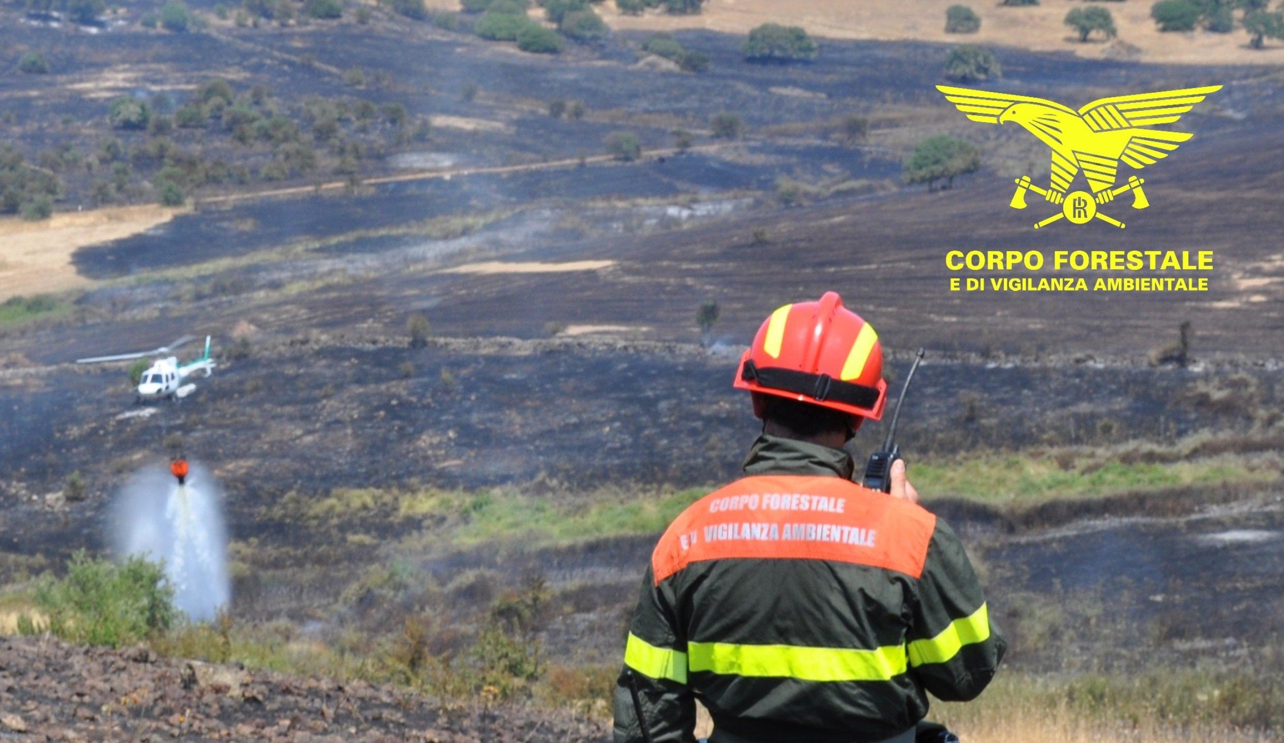 Dalle ore 14.00 il Corpo forestale sta gestendo con l'uso dei suoi mezzi aerei diversi incendi.