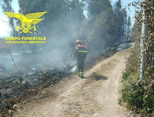 Sono in corso le operazioni di spegnimento dell'incendio sviluppatosi ieri sera nelle campagne di Teulada.