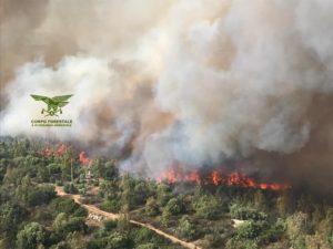 Il Servizio Territoriale di Lanusei del Corpo Forestale e di Vigilanza Ambientale ha fatto il bilancio su diversi eventi incendiari che hanno interessato l'Ogliastra.