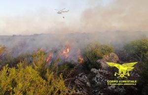 Un elicottero del Corpo forestale proveniente dalla base di Anelasta intervenendo su un incendio nelle campagne di Burgos, in località Casteddu Etzu.
