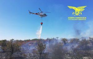Su un totale di venticinque incendi registrati oggi in Sardegna, due hanno richiesto l'intervento del mezzo aereo del Corpo forestale.