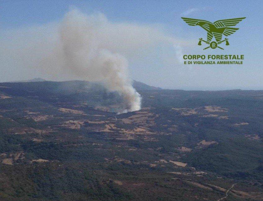 Un elicottero del Corpo forestale sta intervenendo per spegnere un incendio a Nureci.