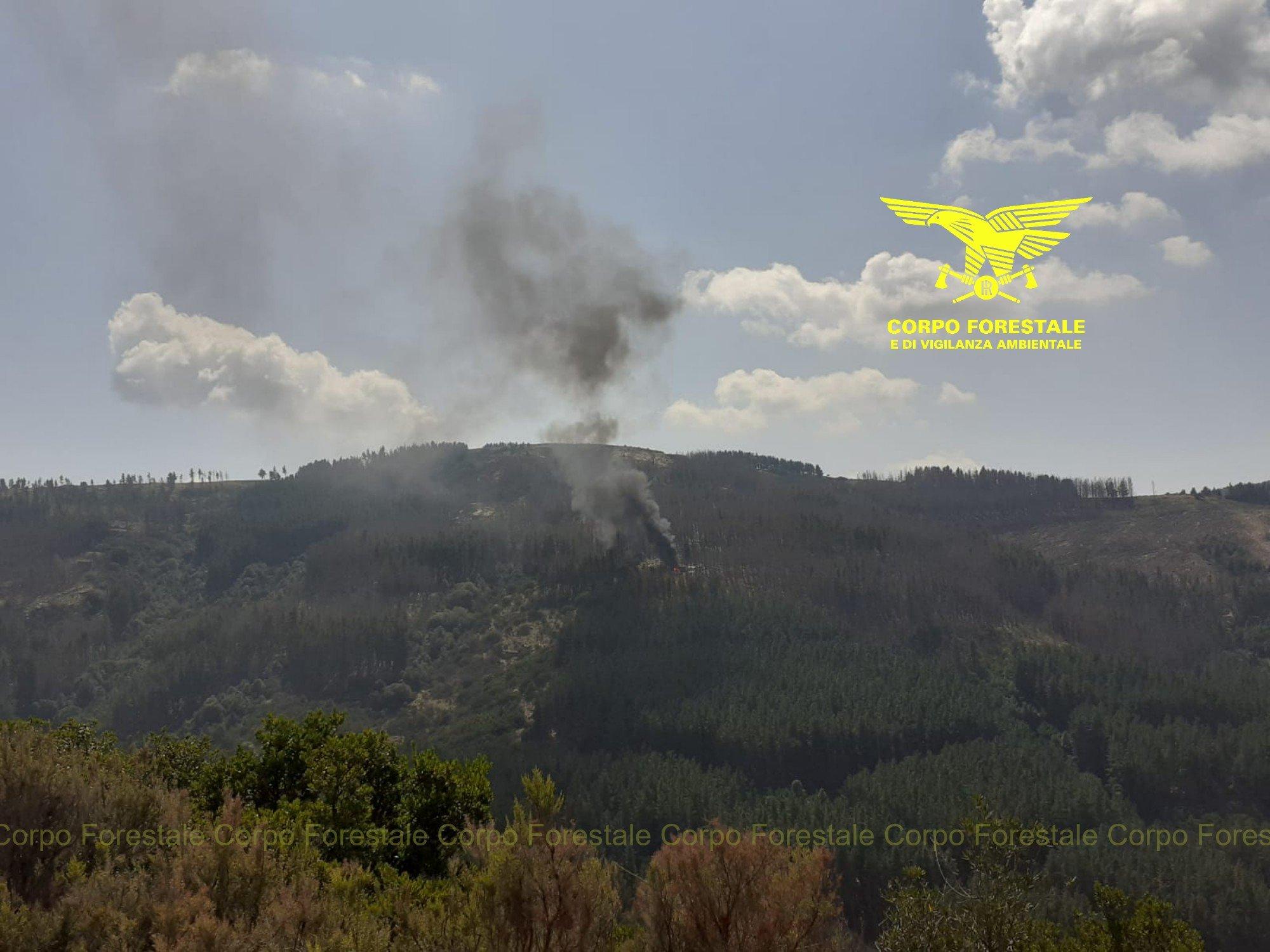 Oggi tre incendi, in Sardegna, hanno richiesto l'intervento del mezzo aereo del Corpo forestale.