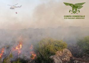 Nella giornata odierna, in Sardegna, tre incendi hanno richiesto l'intervento del mezzo aereo del Corpo forestale.