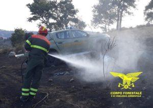 Nella giornata odierna, su un totale di 25 incendi, solo uno ha richiesto l'intervento dei mezzi aerei del Corpo forestale.
