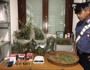 I carabinieri della Compagnia di Dolianova hanno deferito a piede libero 11 persone, tra cui 4 donne, per detenzione ai fini di spaccio ed arrestato un 56enne per detenzione ai fini di spaccio di 3 kg di marijuana.