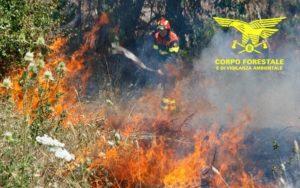Un elicottero del Corpo forestale proveniente dalla base di Anela, sta intervenendo su un incendio sviluppatosi nelle campagne di Pattada, in località Punta Coluzzu.