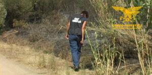 Stamane un 40enne di Escalaplano è finito agli arresti domiciliari per il delitto di incendio boschivo.