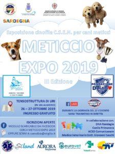 Quattrozampe in gara per conquistare il titolo di miglior cane senza pedigree. A Uri la manifestazione Meticcio Expo 2019.