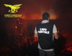 Le Sale Operative del Corpo forestale stanno gestendo da questa notte, due grossi incendi nella parte ovest della Sardegna, in particolare ad Arborea e Bosa.