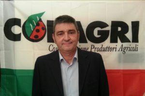 La Copagri di Oristano presenta la sua proposta per superare la crisi del prezzo del latte di pecora in Sardegna.