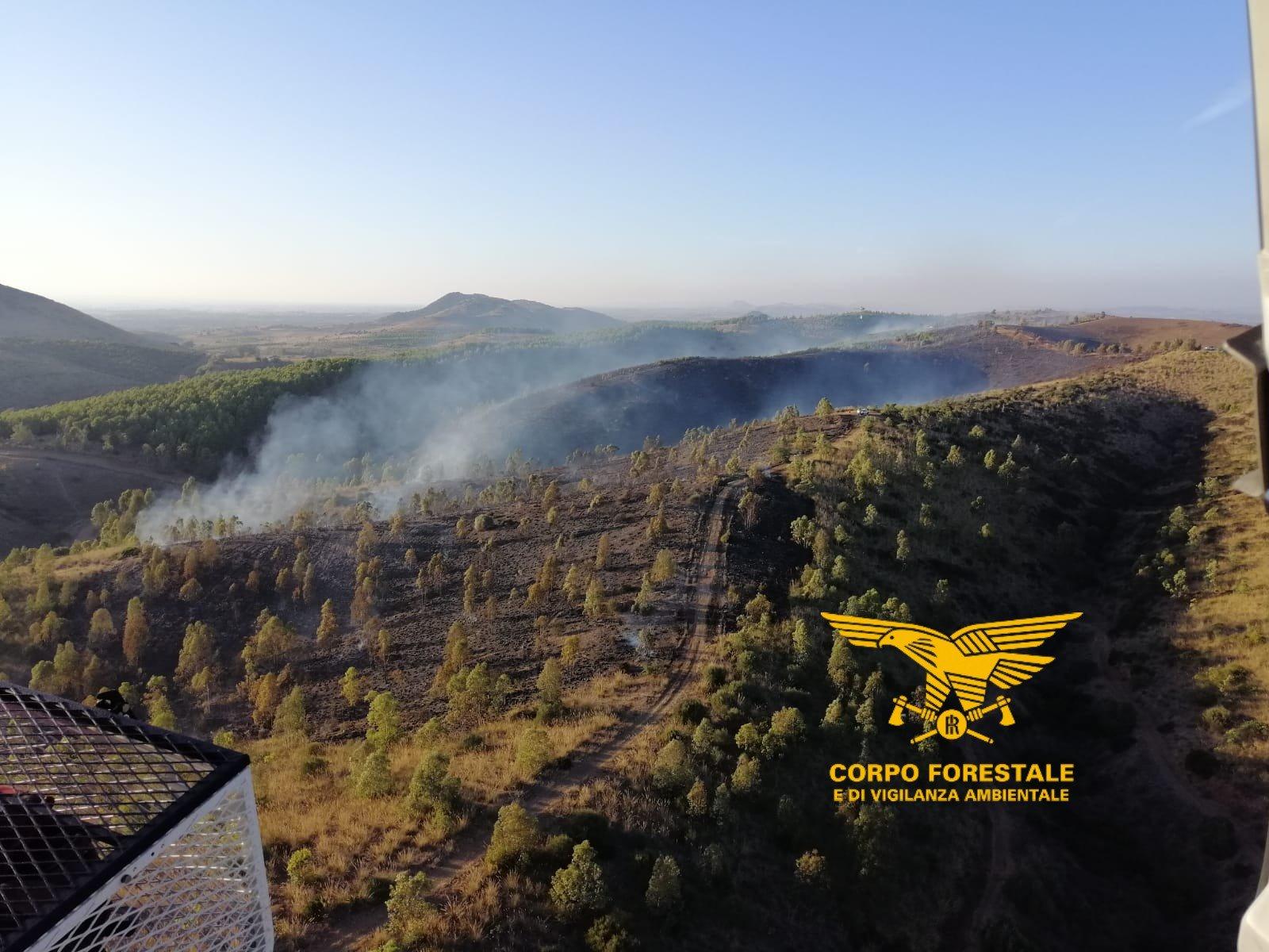 Nella giornata odierna, su un totale di 18 incendi, 2 hanno richiesto l'intervento del mezzo aereo del Corpo forestale.