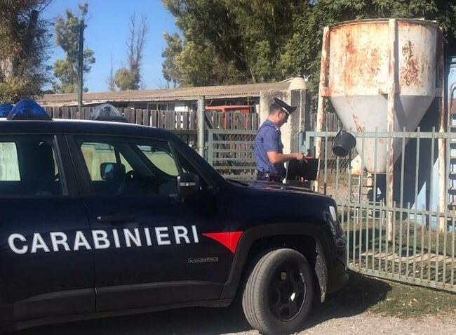 Un allevatore di Guasila è stato arrestato dai carabinieri, dopo essere stato trovato in possesso di 50 grammi di cocaina nascosta nell'auto, e in casa di 2 kg di marijuana e una pistola modificata.