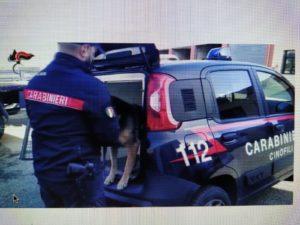 Operazione antidroga dei carabinieri di Cagliari: eseguite due ordinanze di custodia cautelare, un obbligo di dimora e 6 persone denunciate.
