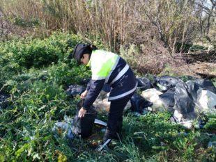 Riprendono i controlli ambientali della Polizia locale di Carbonia sul corretto conferimento dei rifiuti