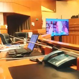 Il professor Frosini in videoconferenza alla commissione Insularità: «Ecco le strade per riconoscere dignità alla Sardegna»