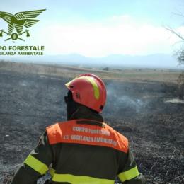 Dueincendi, domenica 10 maggio, hanno richiesto l'intervento dei mezzi aerei del Corpo forestale della Sardegna