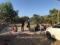 L'indignazione di GN Sulcis per il nuovo sbarco di migranti a Porto Pino