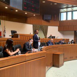 La commissione Sanità ha sentito in audizione i componenti del Comitato scientifico della Regione sull'emergenza Coronavirus