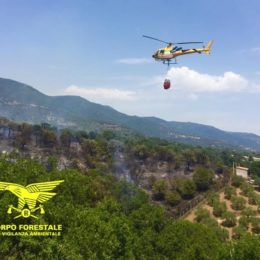 """Si sono concluse alle ore 19.00 le operazioni di spegnimento dell'incendio sviluppatosi nelle campagne di Santadi, in località """"M. Pau"""""""