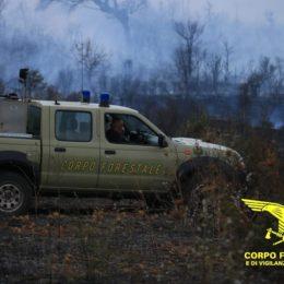 Incendi a Irgoli, Budoni e Mandas: sul posto il Corpo forestale