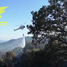 Incendio nelle campagne di Assemini, sul posto il Corpo forestale