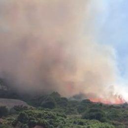 Nella giornata di ieri, su un totale di 17 incendi sviluppatisi in Sardegna, 3 hanno richiesto l'intervento del mezzo aereo del Corpo forestale