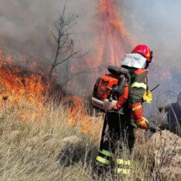 Incendio nelle campagne di Domusnovas, sul posto il Corpo forestale
