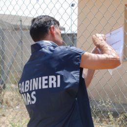 A Carbonia i carabinieri hanno scoperto una casa per anziani abusiva, agli arresti domiciliari la coppia di coniugi che la gestiva